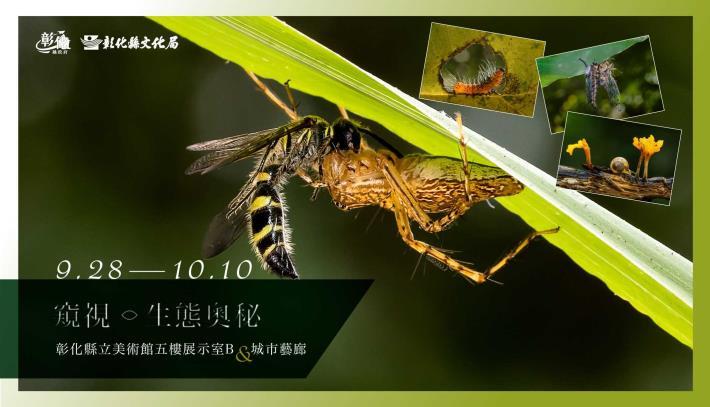 banner-電視牆-2132X1225